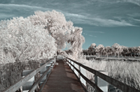 Lake Washington IR Melbourne Florida