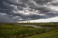 Approaching Storm at Viera Wetlands